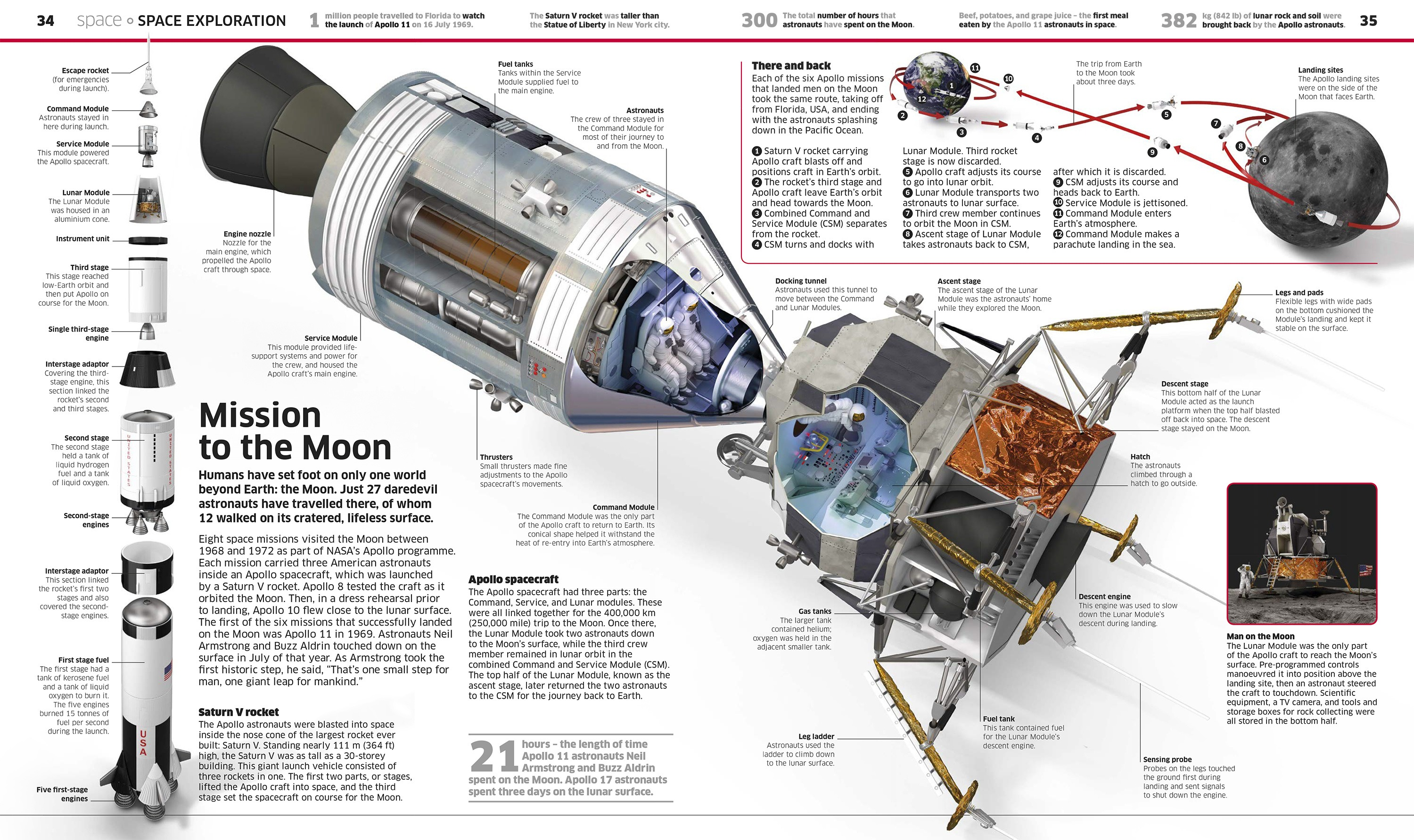 stas3dart-dorling-kindersley-knowledge-encyclopedia-illustration-apollo11
