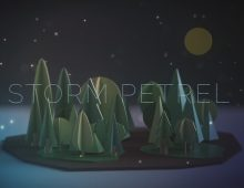 David Lawrie | Storm Petrel